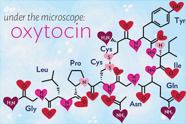 erezione di ossitocina motivo della donna per mancanza di erezione