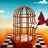 gabbia-liberta
